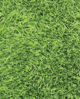 หญ้าเทียม 25 มม. B